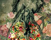 Flores y Anatomía