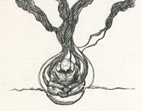 Roots Pt. 2