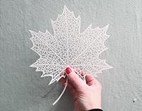 papercuts 2014
