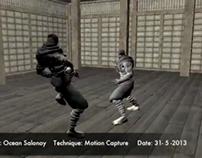 Ninja Flight Motion Capture