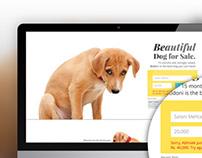 Bid for Bodoni Website