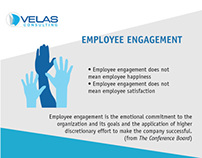 Redesigned Business infographic for Velas Consulting