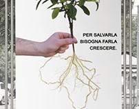 Caritas Italiana ADV