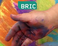 BRIC Brochure