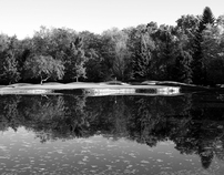 The Grass Roots • Laurel Valley Golf Club