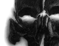Cranial Views Series