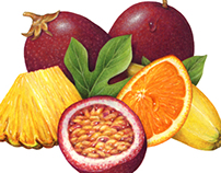Fruit Illustrations for Gourmet Latte Smoothie Mixes