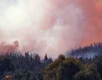 Forest Fire / Angol - Chile