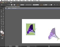 How To Get Started with Adobe Illustrator CC