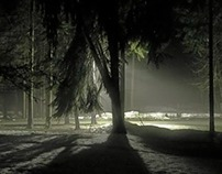 Nightlandscapes