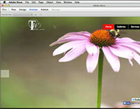 NEW for 2014: How To Get Started with Adobe Muse CC