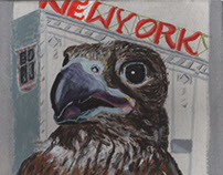 Falcon of New York
