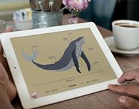 Whale Watch | WWF App