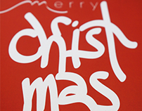 2013 Merry Christmas Card