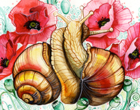 FlowerSnails