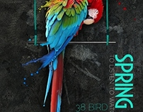 brochure:Bird show