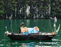 Vietnamese boat diversity