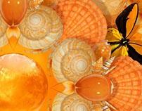 Les Merveilles orange I