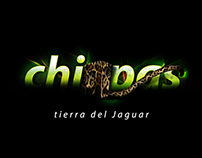 Chiapas. Tierra del Jaguar