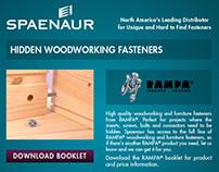 Spaenaur - Web Landing Pages