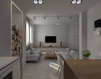 Apartment interior design, 45m2