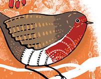 Garden Birds - Robin