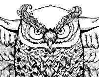 Owl with keys