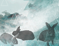 Bunnies in The Sky Graphic