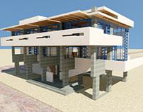 The Lovell Beach House Case Study