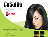 CoSaMo Convention Product Flyer