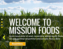 Mission Foods Oceania // Digital Strategy