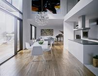 Architect's home interior visualization