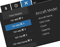 Airline Fleet Analytics Concept