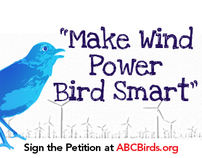 American Bird Conservancy - Banner Ads