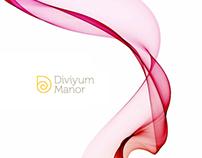 Diviyum Manor branding