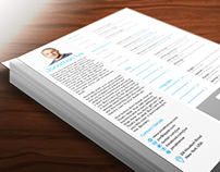 iOS 7 Style InDesign Resume Template