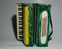 Art book The accordion