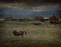 Iceland :: Departure, A Story of Loss