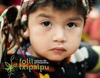 Folil Txipalpu