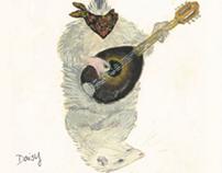 Bluegrass Animal Band