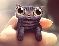 I Dream of Weird Cats
