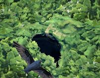 Ecofilm 2013