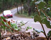 VÍDEO 2n Rally de la Terrissa