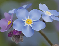 Flower in Adobe Illustrator