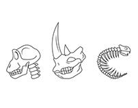 Bone Typeface