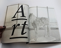 """Icelandic Art Festival"" book project"