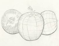 Cross Contour Drawings
