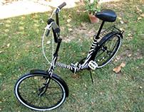 Zebra-bike