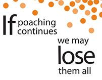 PSA Poaching Poster