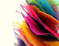 Coloration